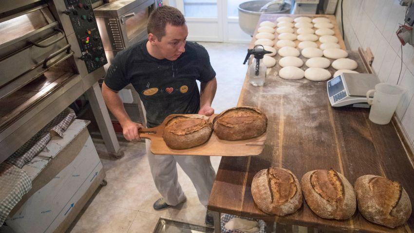 Eljárt az idő a fehér kenyér egyeduralma felett