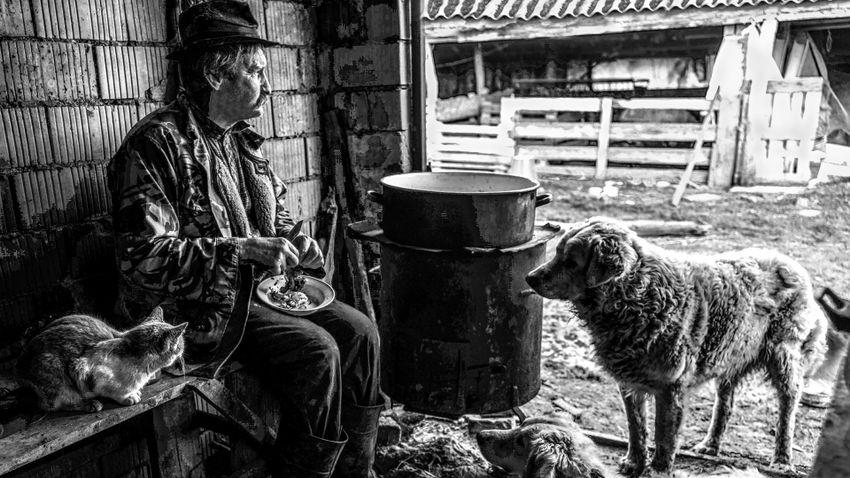 Fotókon a tradicionális pásztorélet talán utolsó hazai képviselői