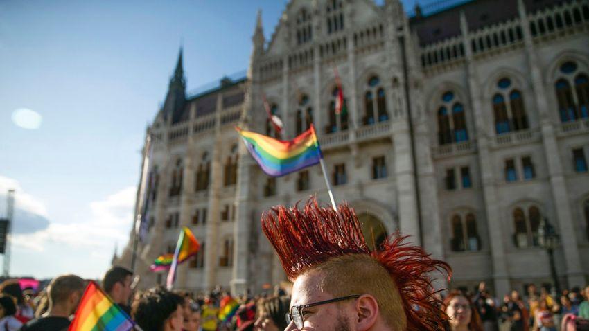 Találva érzi magát az LMBTQ-lobbi