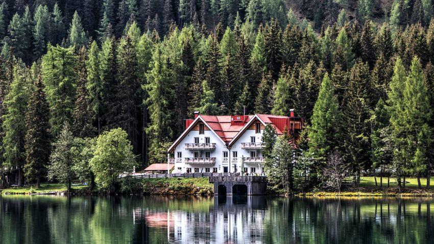 Kutatók szerint erdő közelében érdemes élni a családunkkal