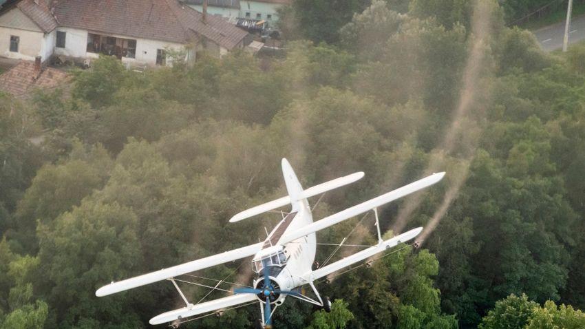 Szúnyoggyérítés zajlik a Balatonnál