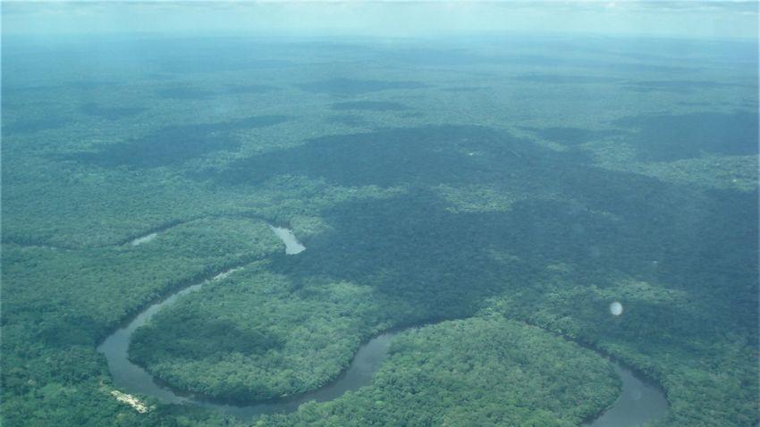 Sikeresen megóvták a veszélyeztetett kongói nemzeti parkot