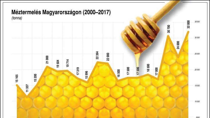 Elmarad a méhésznap Szekszárdon: a méheket is megviseli az időjárás