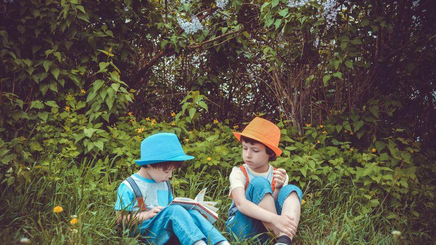 A vakáció örömei: feledhetetlen kalandok a kertben
