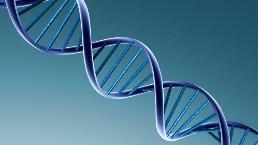 Génterápiára is alkalmas lehet a miniatűr molekuláris olló