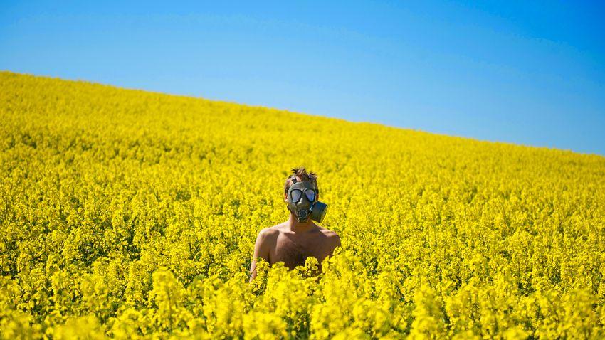 Allergia kezelés online: a távorvoslás előnyei és korlátai