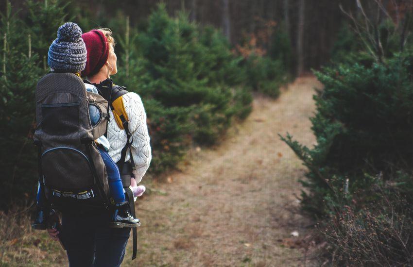 Őszi túraötletek, amelyek kezdő túrázóknak is élvezetesek