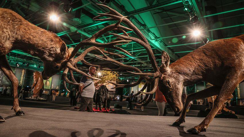 Egy a természettel – a hétvégén megnyílt a vadászati világkiállítás