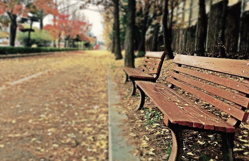Bartók Béla Boulevard köztéri bútorait álmodhatjuk meg