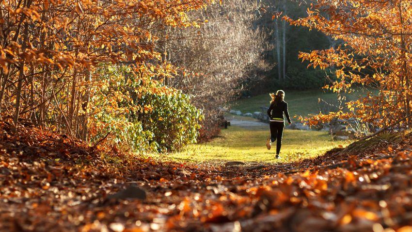 Íme a legjobb zenék egy kiadós őszi futáshoz